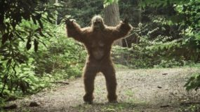 Are you an Ecological Bigfoot?