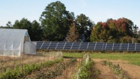 A First Step to Community Solar for All
