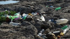 End Plastic Pollution: Plastic Doesn't Go Away; It Just Gets Smaller and Smaller and Lasts Forever