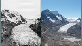 athabasca glacier retreating