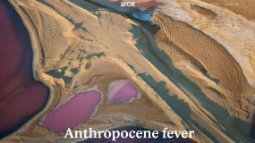Anthropocene fever
