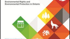 Read the Environmental Commissioner of Ontario's Full Report or Executive Summary