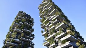 Why Milan is covering its skyscrapers in plants