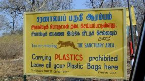 De-Plasticizing the Planet?