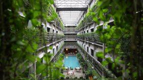 Hotel with abundance of greenery