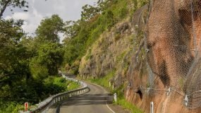 Netting over escarpment by a road