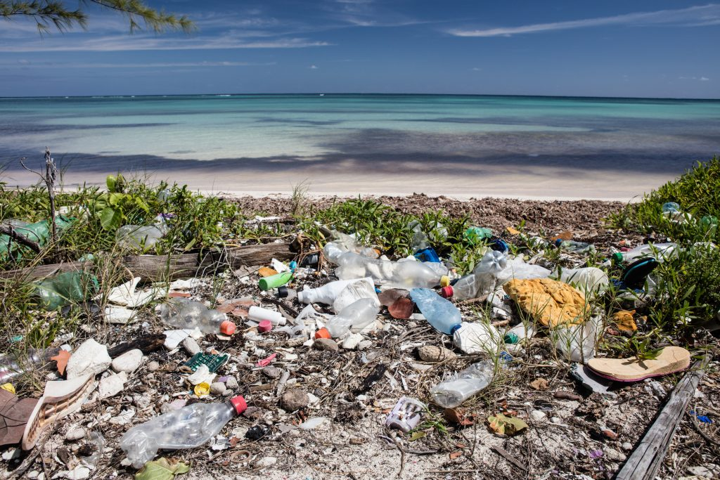 Plastic trash has washed ashore on a remote beach in the Caribbean Sea. Plastic breaks down into tiny pieces that eventually enter the food chain, harming wildlife and threatening human health.