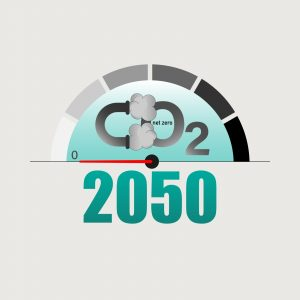 Measuring pointer display zero level as a gimmick of achieving net-zero CO2 emissions by 2050