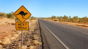 Kangaroo warning sign in central Australia