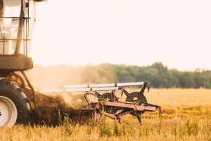 A combine harvester in the field